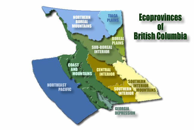 Ecoprovinces of British Columbia